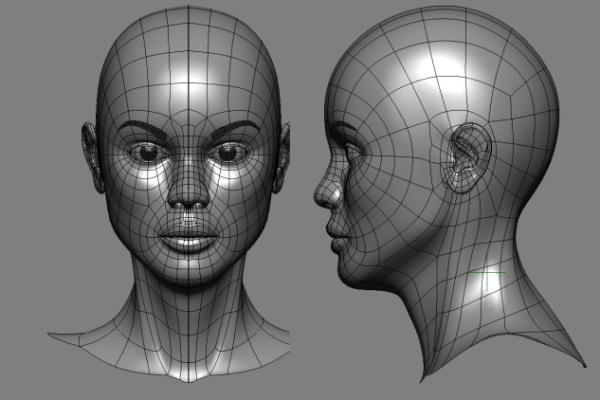 humane-face-profile